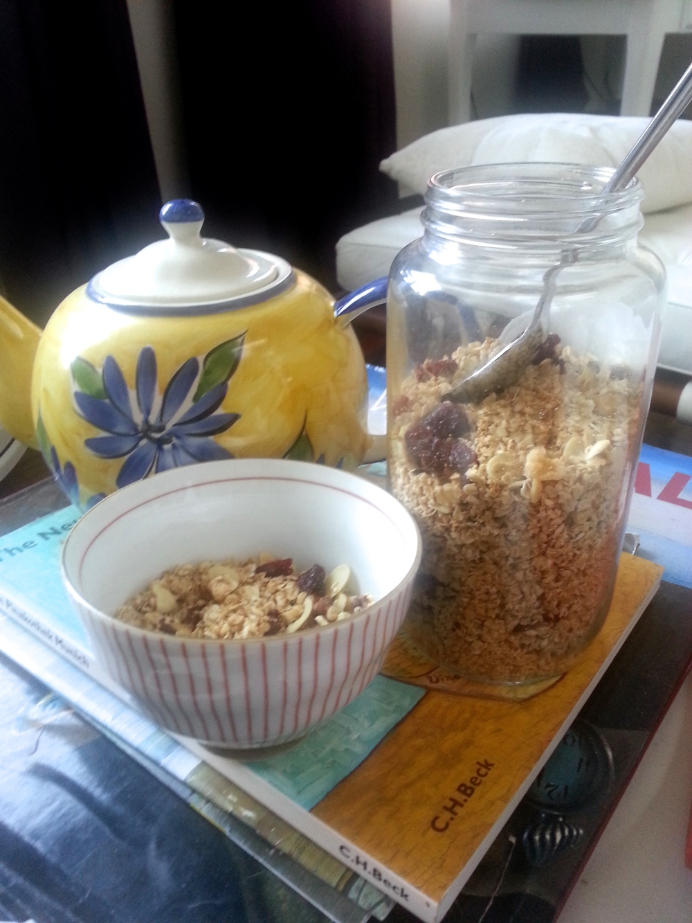Homemade Coconut Cranberry Granola Recipe