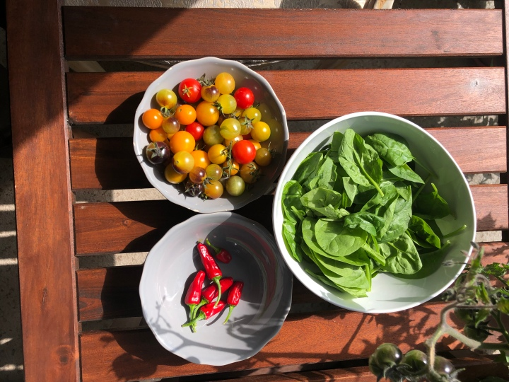Cooking with food from your garden